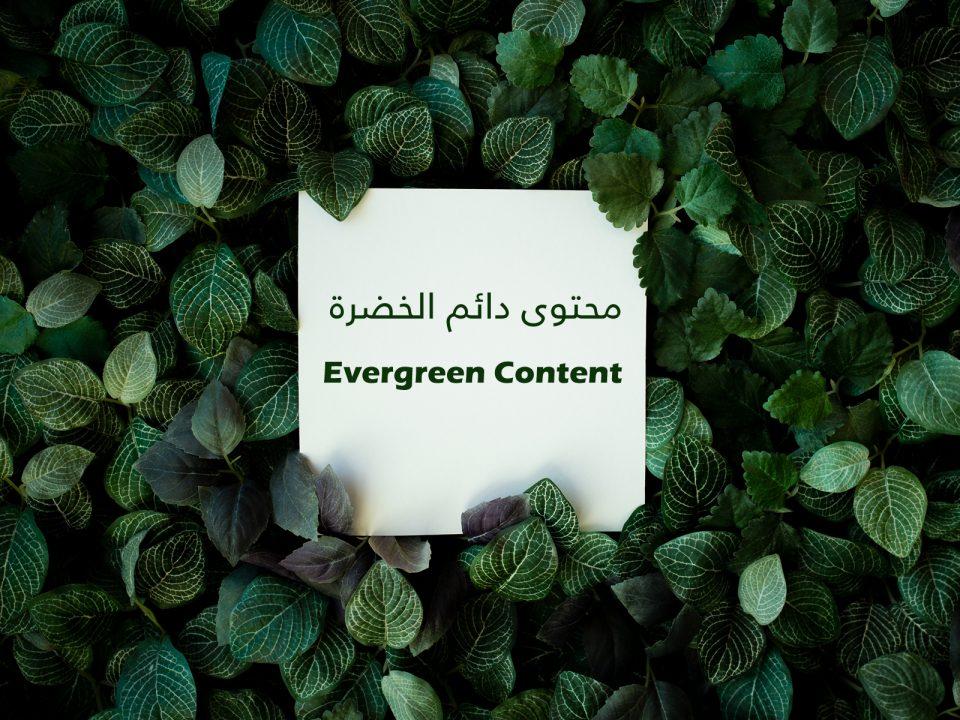 محتوى دائم الخضرة Evergreen Content